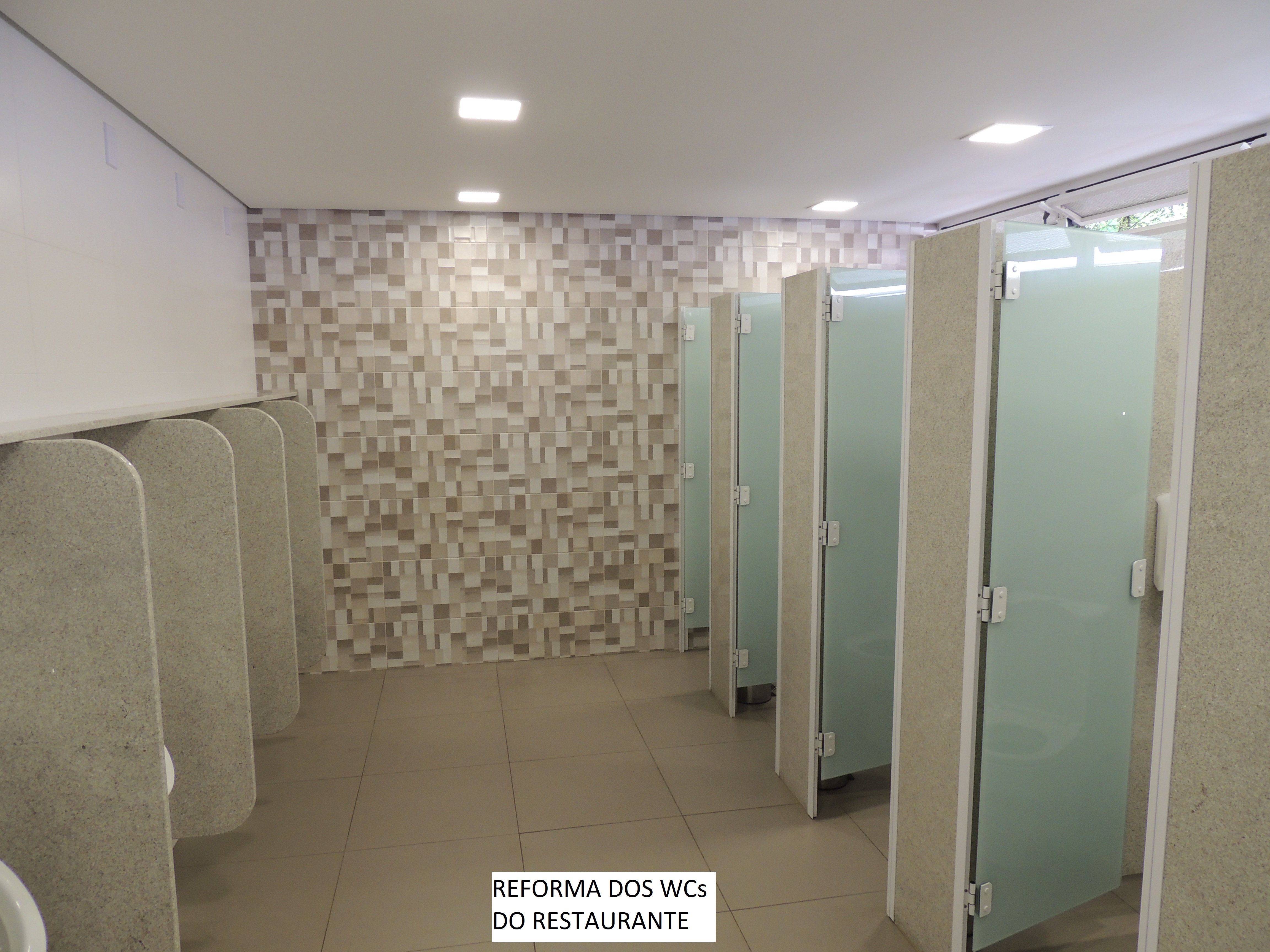 wc masculinoDSCN1315