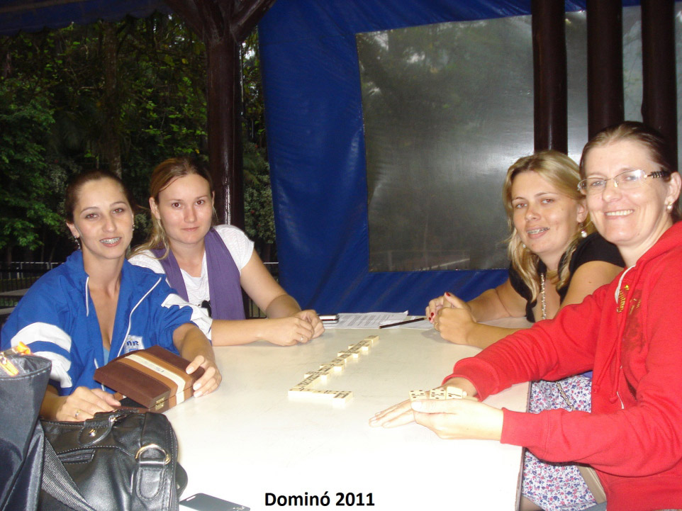 domino2011